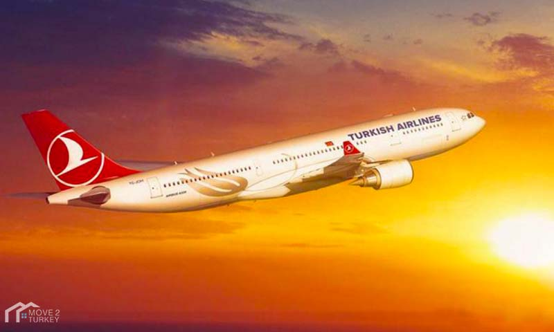 Turkish Airlines suspends flights
